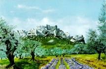 150-les-alpilles-lavandes-et-oliviers-aux-baux-de-provence