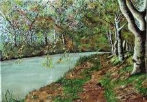 194-vers-carcassonne-sur-le-canal-du-midi