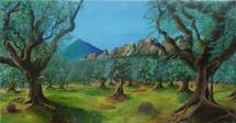 207-oliviers-en-provence