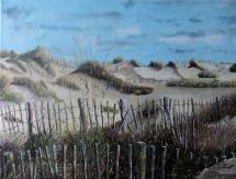 214-dunes-et-ganivelles-a-lespiguette