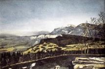 35-bois-vert-sur-fond-de-chartreuse