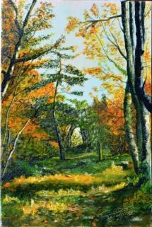 97-couleurs-automne